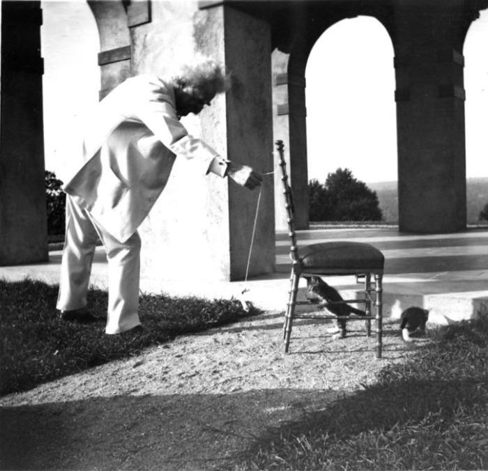 Марк Твен и котенок.