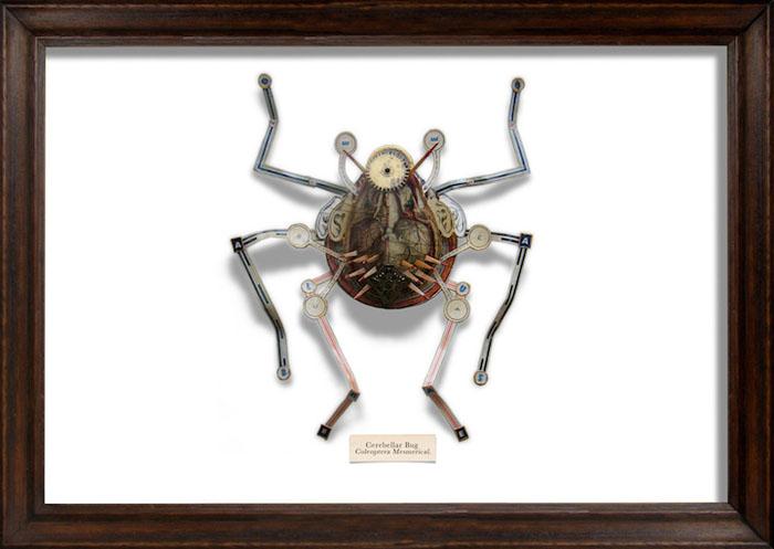 Коллекция мусорных жуков Марка Оливера.
