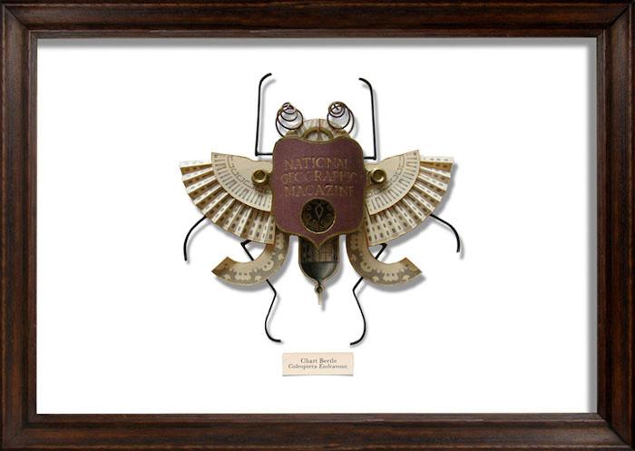 Удивительный жук, лапы которого созданы из дужек очков.