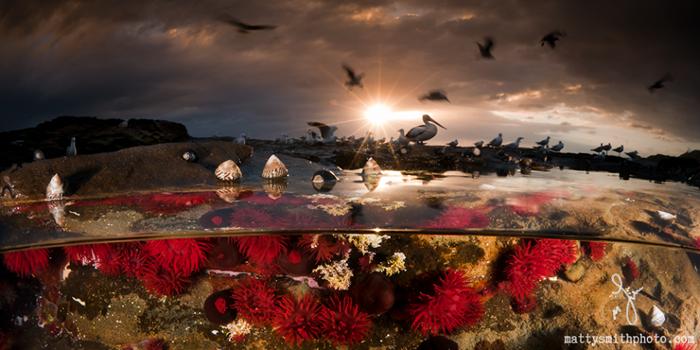 Порт Кембла, Австралия. Фото: Matthew Smith.
