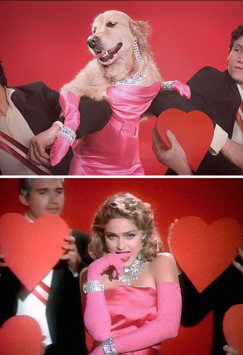 В образе Мадонны в клипе *Material Girl*.