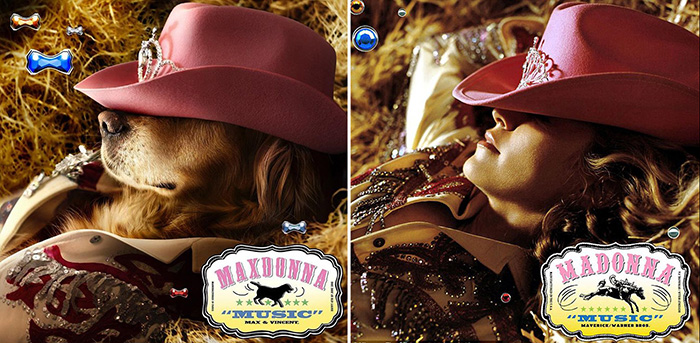 Макс отдыхает в стоге сена, позируя для трибьюта альбома Мадонны *Music*