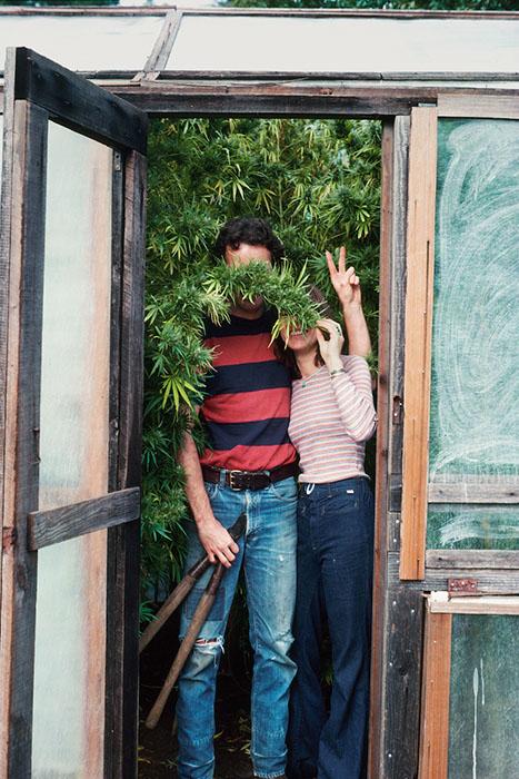 В теплице с марихуаной. 1977 год.