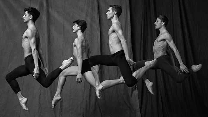 Проект Les Danseurs.