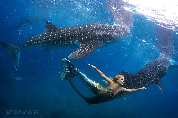 Русалка Ханна под водой.