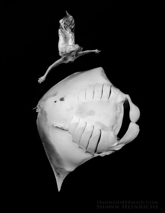 Скат и Русалка Ханна. Фотограф Shawn Heinrichs.