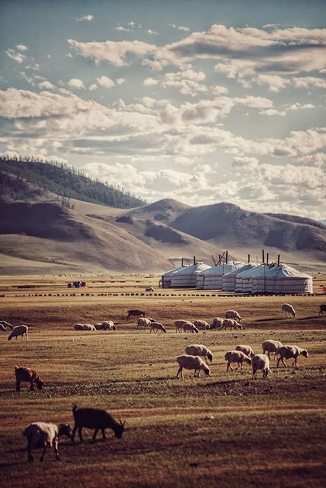 Монголия.  Instagram bizoo_n.