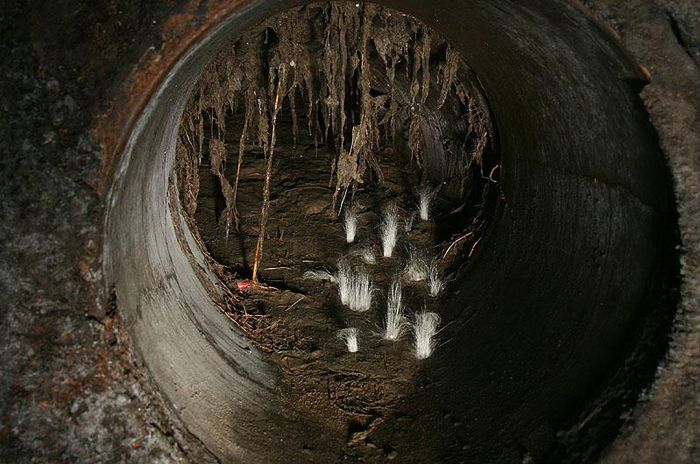 Узкий проход в подземном мире.