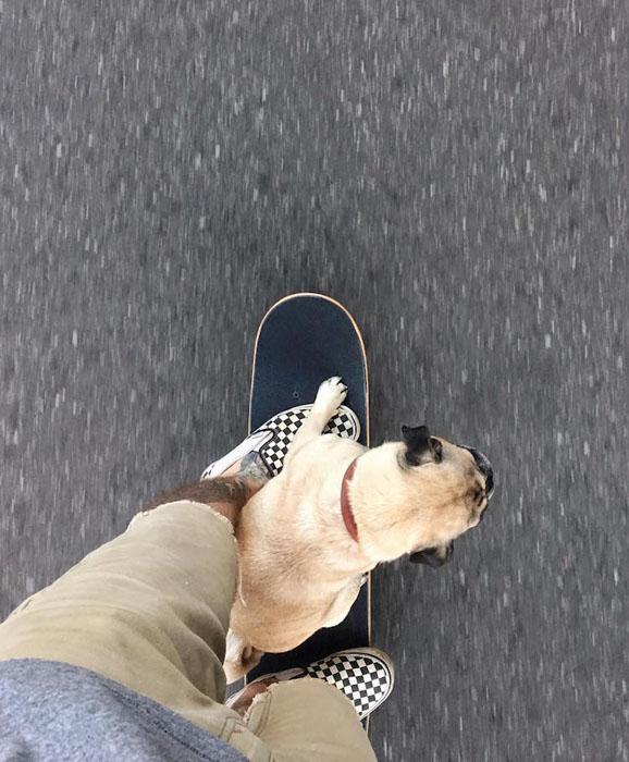 Прогулка на скейтборде.  Фото: Jeremy Veach.