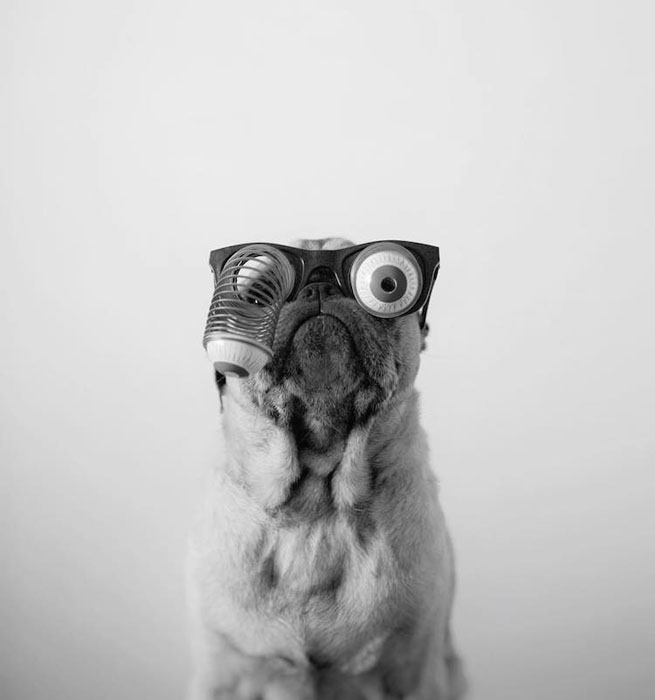 Эти глаза.  Фото: Jeremy Veach.