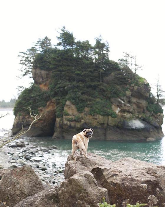 Нам надо туда плыть? Фото: Jeremy Veach.