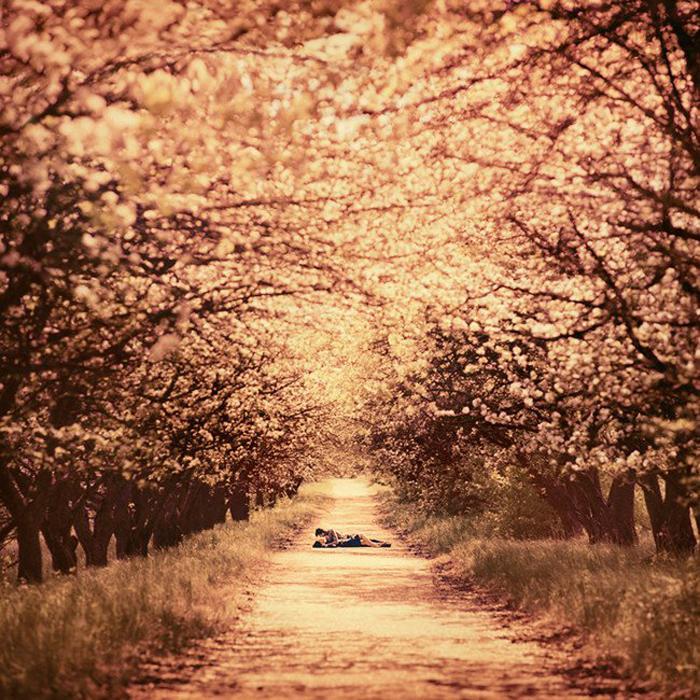 Осень. Автор фото: Олег Оприско.