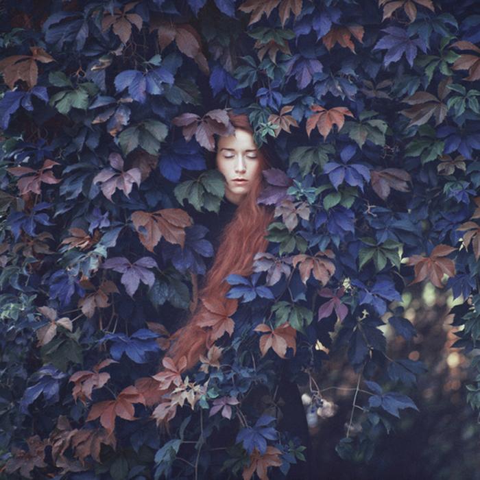 В листве. Автор фото: Олег Оприско.