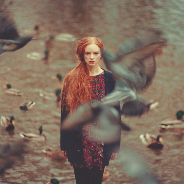 Птицы. Автор фото: Олег Оприско.