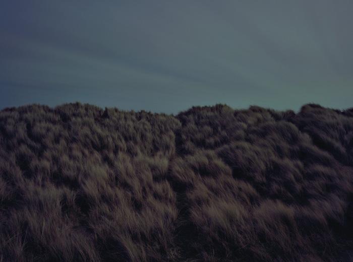 Ночное поле.