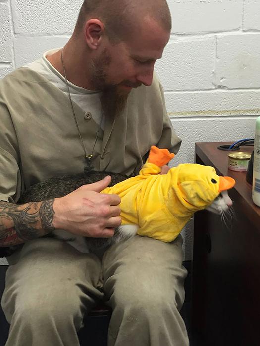Заключенным нередко достаются мало социализированные животные, которые могут проводить года в приюте из-за своего нрава.