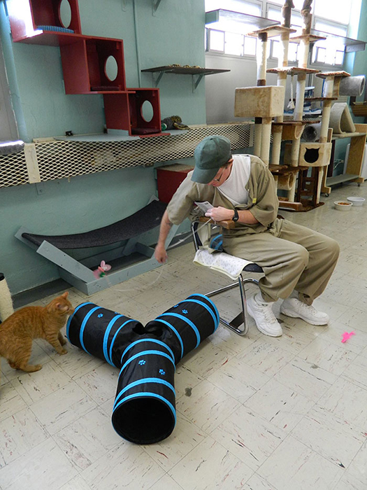 По словам директора организации по защите животных, заключенные лучше себя ведут, тщательнее следят за своей гигиеной, чтобы получить возможность общаться с питомцами.