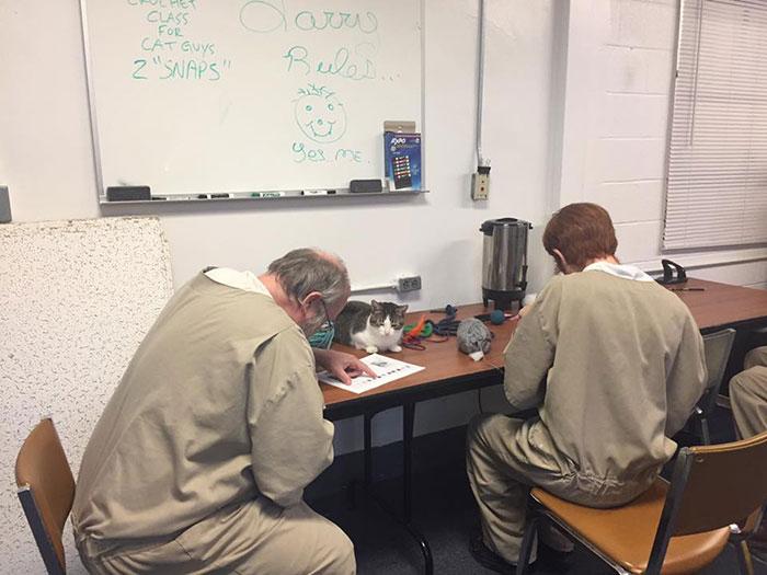 Вместо безделья, у заключенных появляется причины что-то делать, создавать и проявлять инициативу.