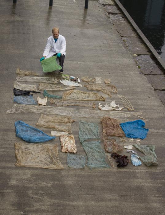Пластиковые пакеты, обнаруженные в кишках кита, умершего около берегов Норвегии. Фото: Christoph Noever.
