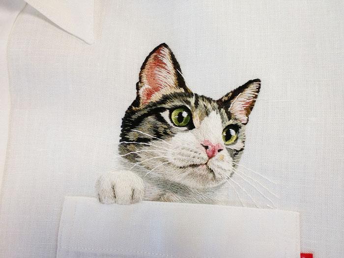 Домашний кот.  Автор: Hiroko Kubota.