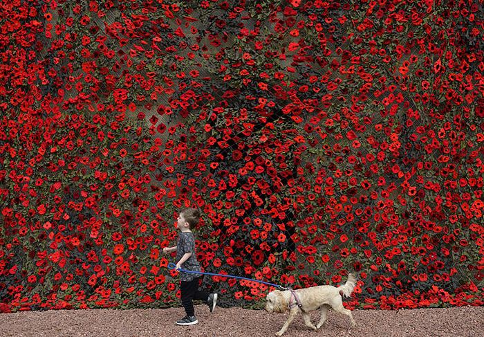 Полотно состоит из 9000 связанных вручную цветков.