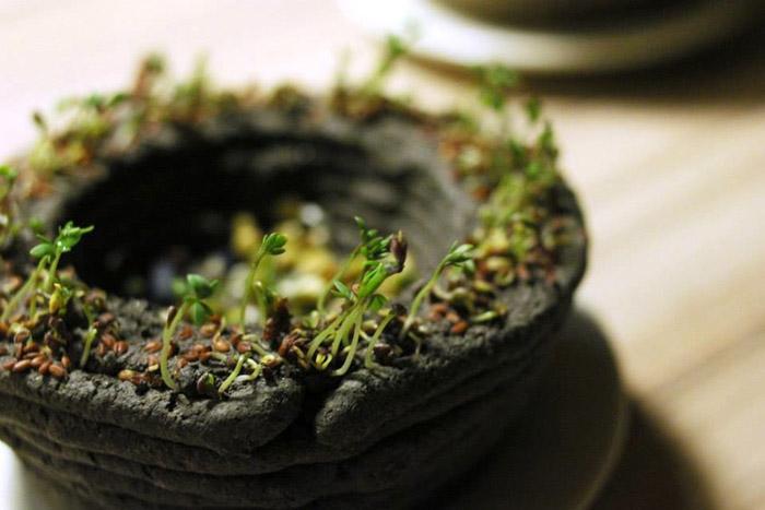*Чернила* представляют собой смесь грунта и семян.