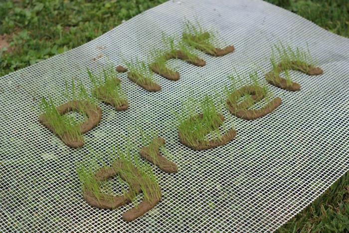 Печатай травой! - органический принтер от  PrintGREEN.