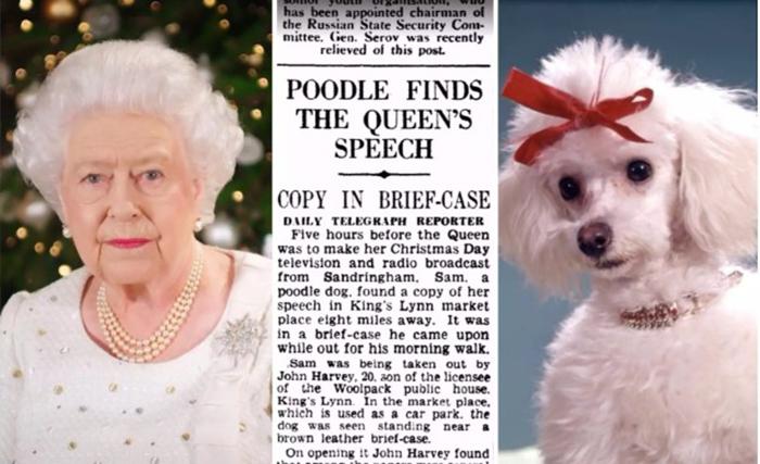 Как пудель спас рождественскую запись поздравительной речи Королевы.