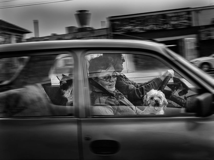 Счастливая семья. Автор фото: Radu Mihai Iani.