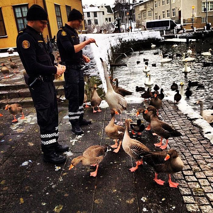 Исландская полиция старается наладить хорошие отношения со всеми жителями страны.