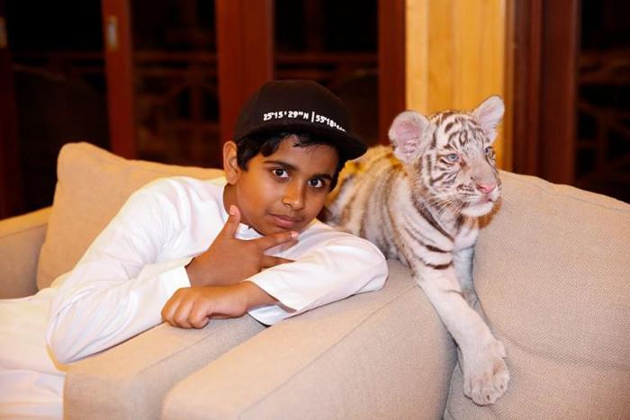 Зоопарк Рашида полон редких животных, включая белых тигров. Instagram rsbelhasa.