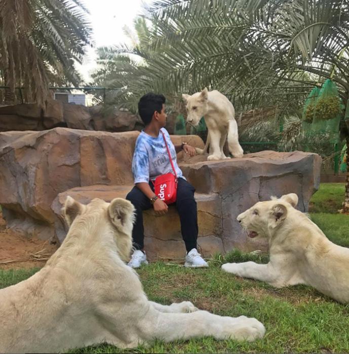 В личном зоопарке. Instagram rsbelhasa.