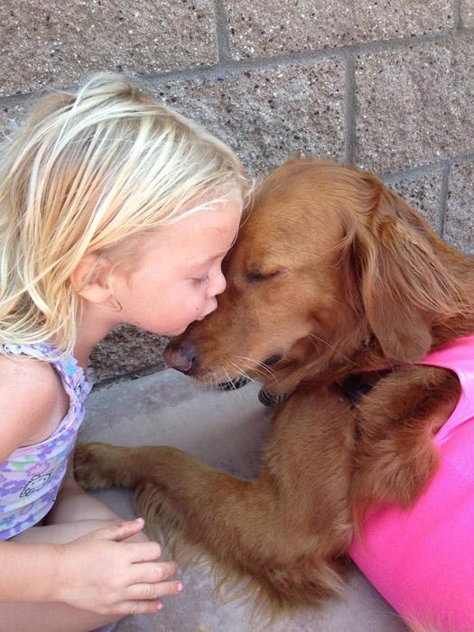 Собака с золотым сердцем.