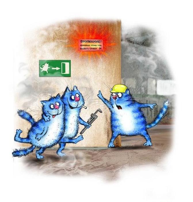 Синие котики Рины Зенюк.