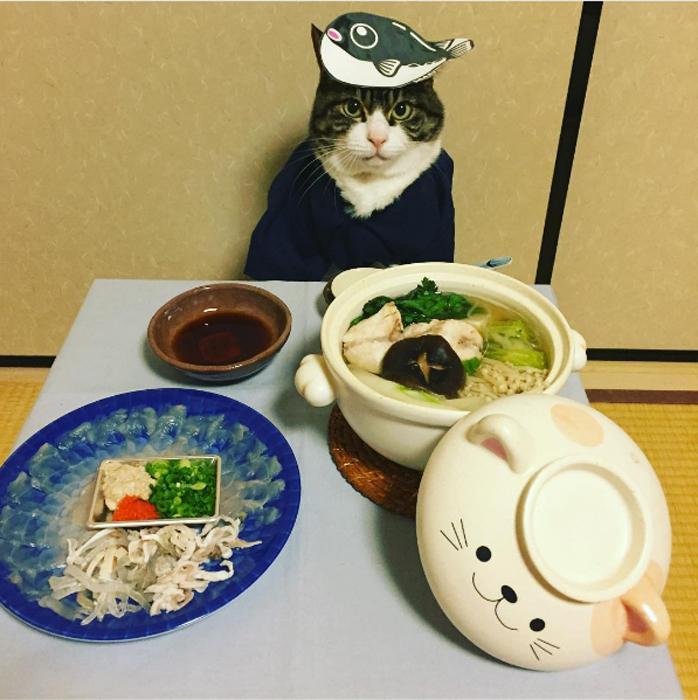 9 февраля - День рыбы-ежа в Японии. Instagram rinne172.