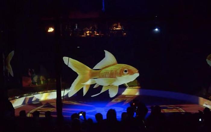 Цирк решил заменить живых зверей на 3D-голограммы.