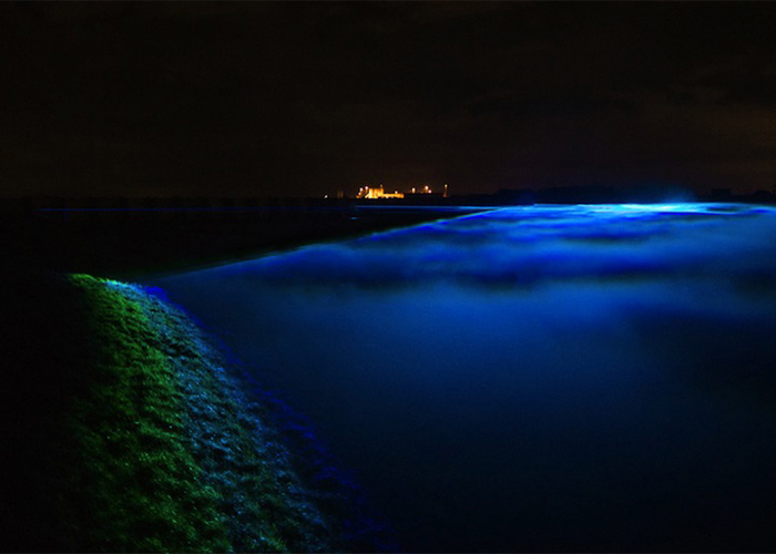 Источник синего света находится непосредственно на дамбе, ограждающей Голландию от моря.