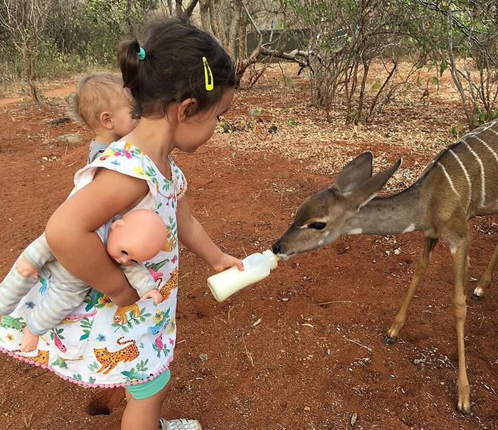 Натали и Уилл приучают своих детей к дикой природе с самого маленького возраста.