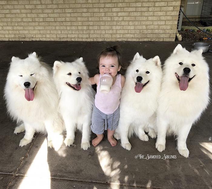 Лейла и домашние питомцы.