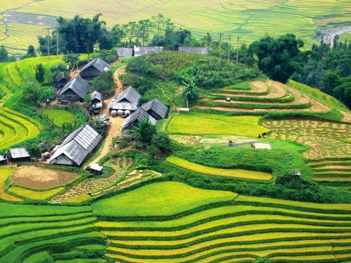 Удивительный пейзаж Вьетнама.