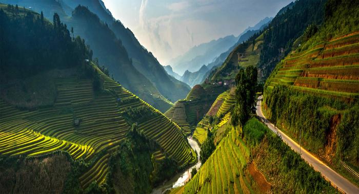 Потрясающе красивый пейзаж рисовых полей Вьетнама.