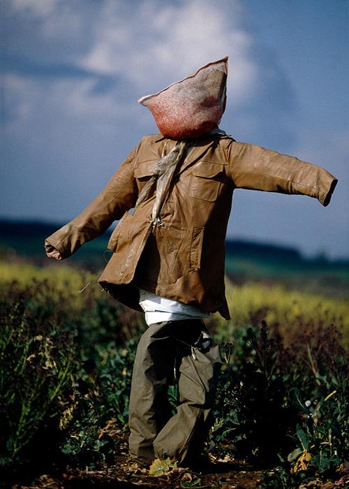 Для некоторых фермеров важно обозначить лицо пугала, для других достаточно создать подобие головы.