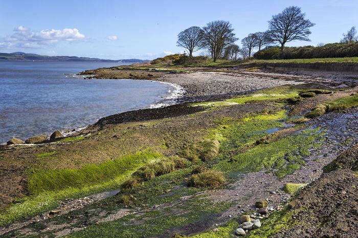 Северное море омывает берега Шотландии.