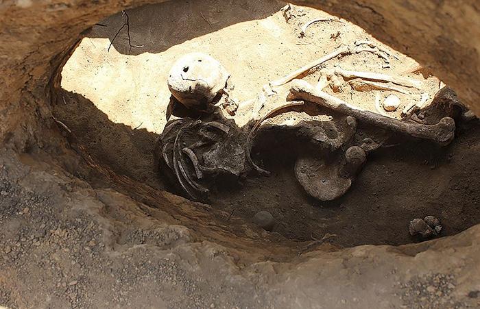 Хорошо сохранившийся скелет возрастом 4000 лет.