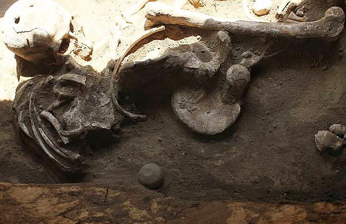 Два круглых отверстия в черепе - необычная характеристика для археологических находок.