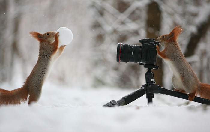 А теперь ты меня сфотографируй!