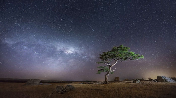 В пустыне. Фото: Jonathan Sander.