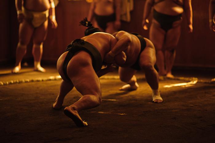 Борцы сумо.