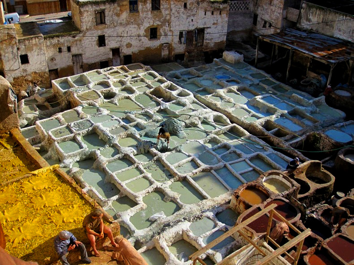 Вместо извести марокканцы используют голубиный помет, который собирают по всему городу