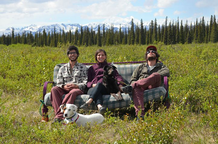 Три друга, две собаки, один диван.